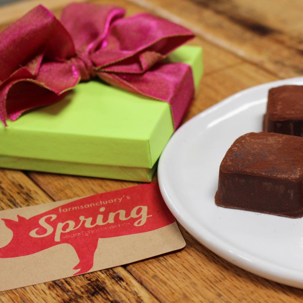 Farm Sanctuary Spring Vegan Chocolate Box