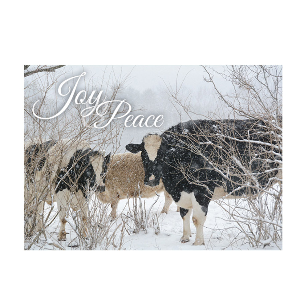 Farm Sanctuary 2017 Holiday Cards
