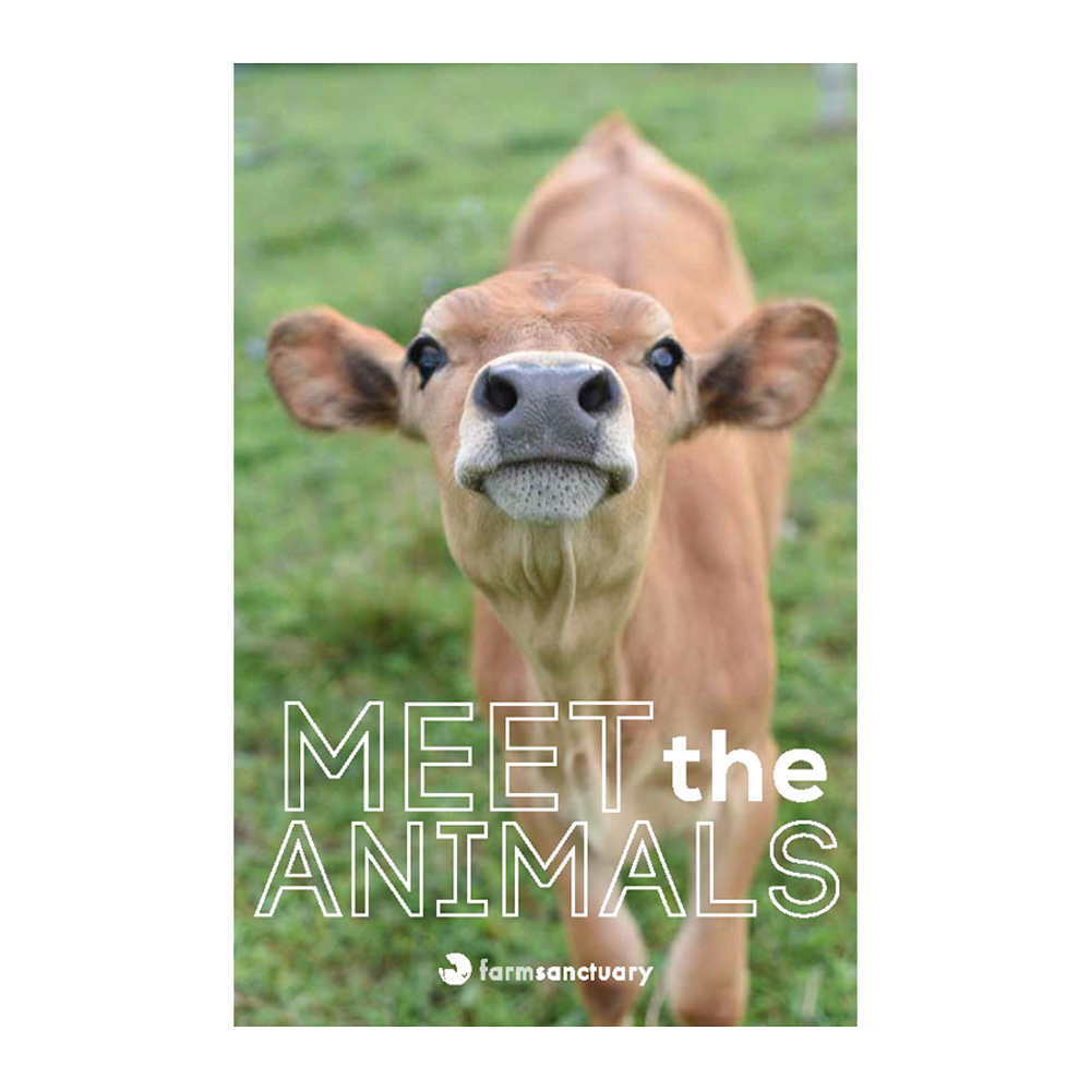 "Farm Sanctuary ""Meet the Animals"" Youth Education Booklet"
