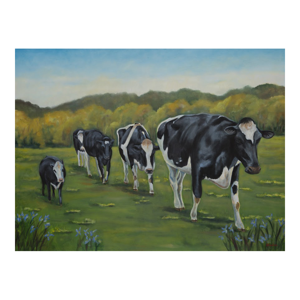 Farm Sanctuary Cows in Field Canvas Print- Small
