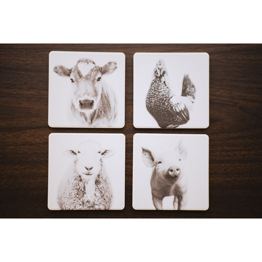 Farm Sanctuary Animal Coaster Set