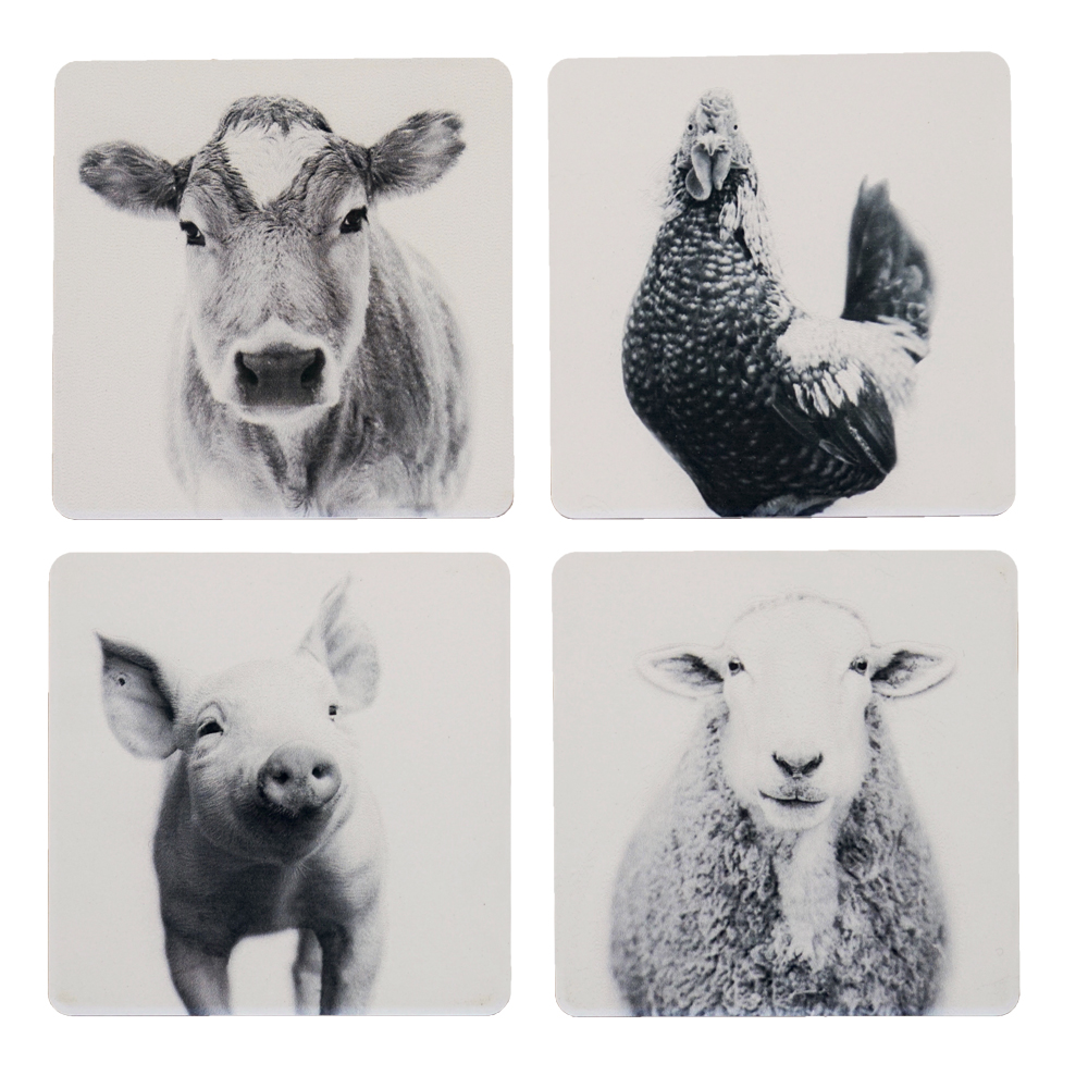 Farm Sanctuary Animal Coaster Set