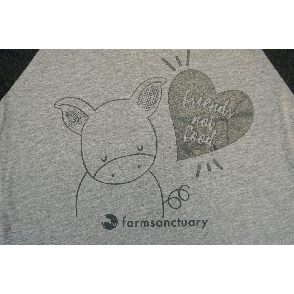 Farm Sanctuary Friends not Food Unisex Raglan Tee - Charcoal