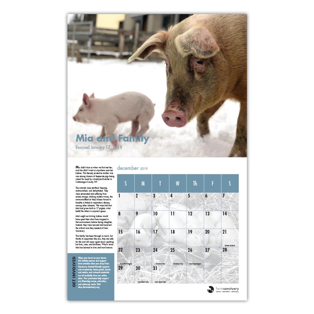 Farm Sanctuary's 2019 Rescue & Refuge Calendar