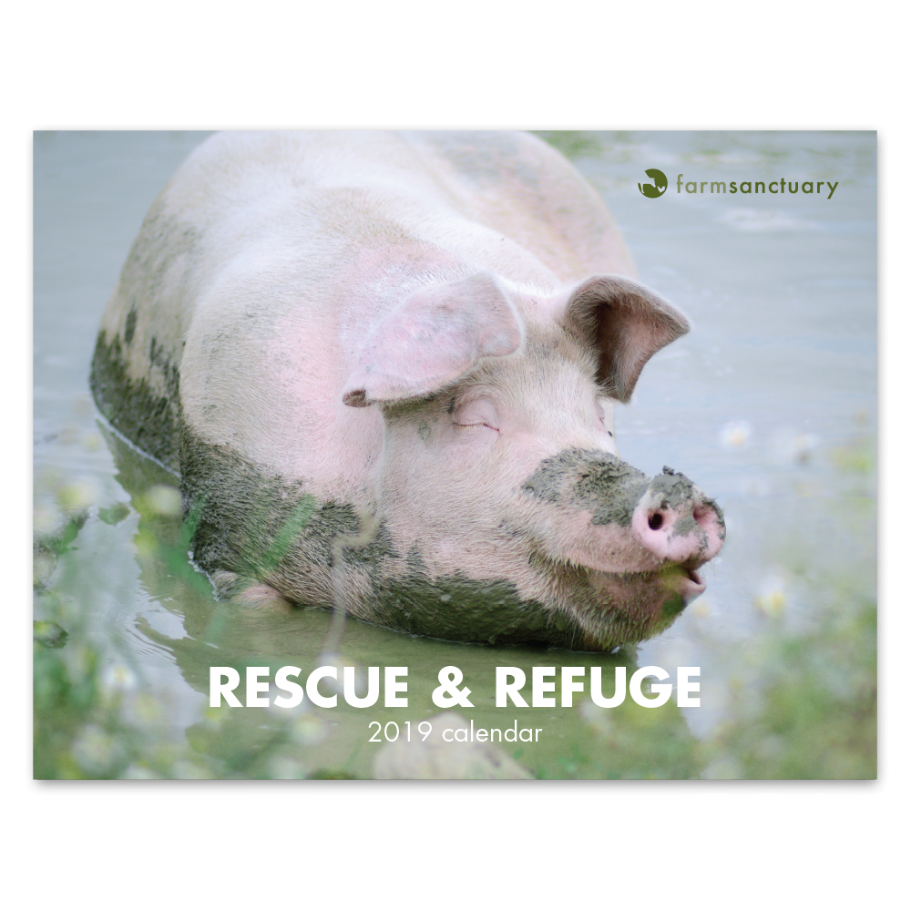 Farm Sanctuarys 2019 Rescue & Refuge Calendar