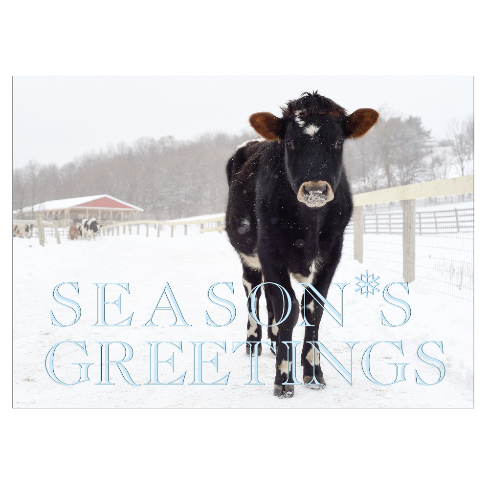 Farm Sanctuary's 2018 Holiday Cards
