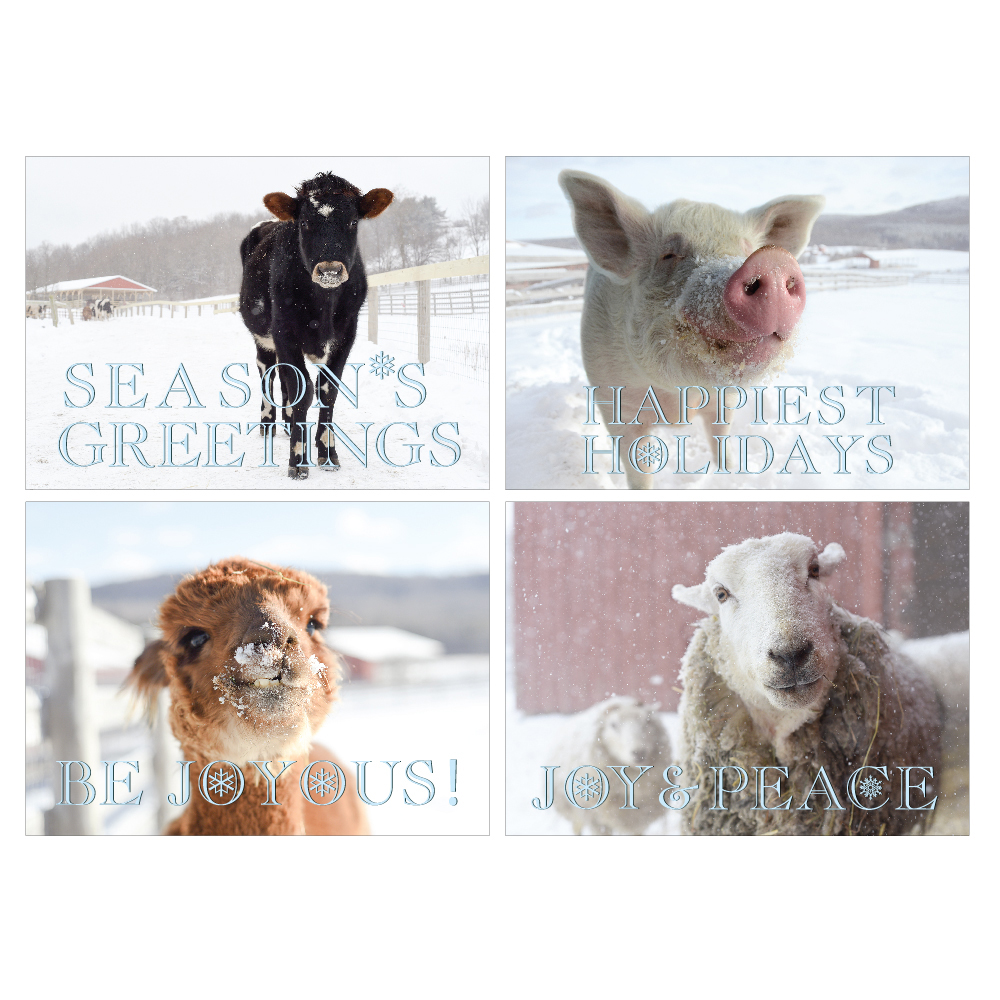 Farm Sanctuarys 2018 Holiday Cards