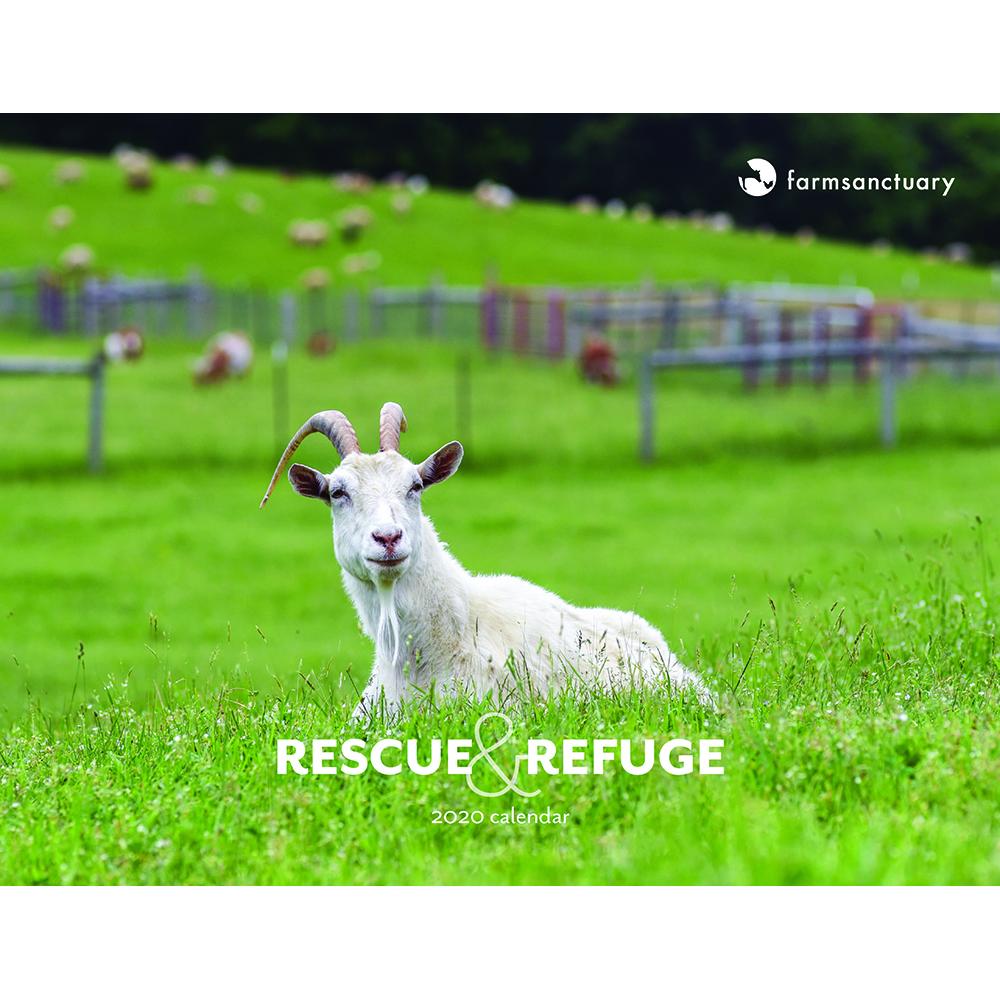 2020 Rescue & Refuge Calendar