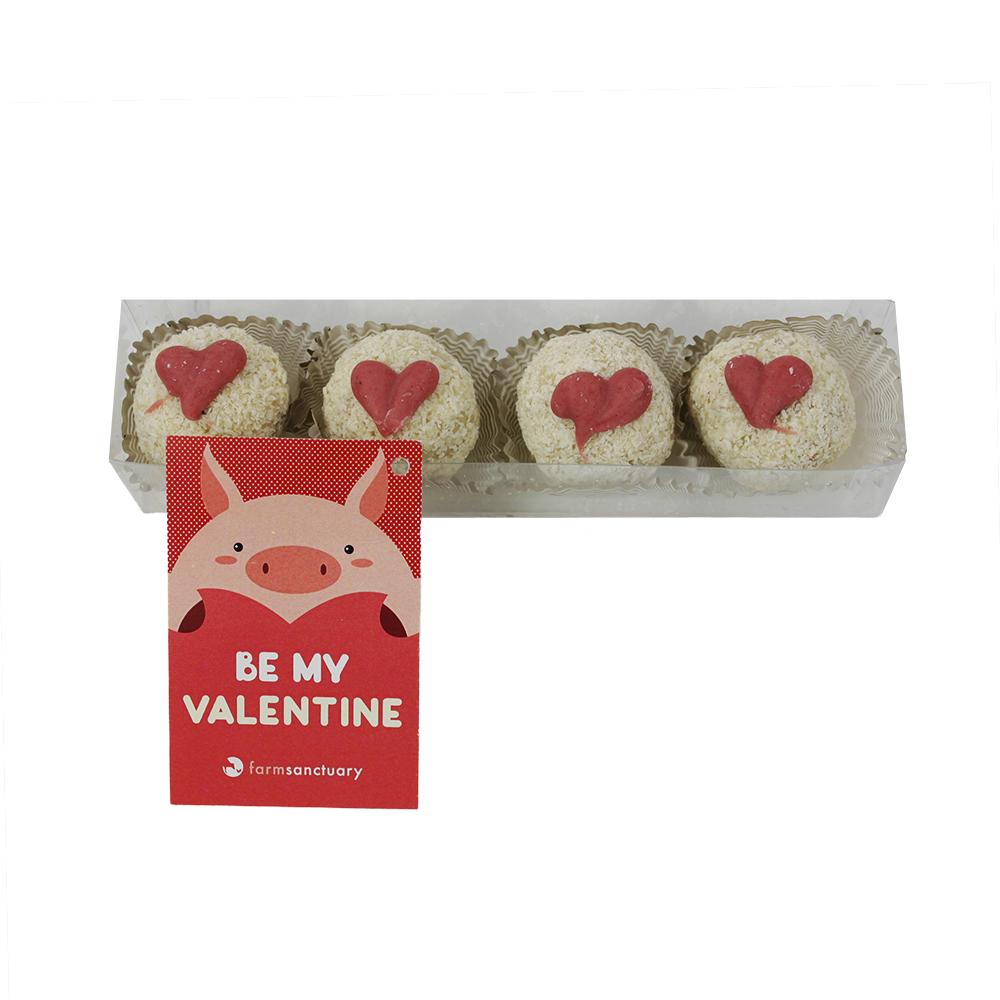 Farm Sanctuary Cupid's Kisses - Vegan, Organic, Gluten Free Valentine's Chocolate Gift