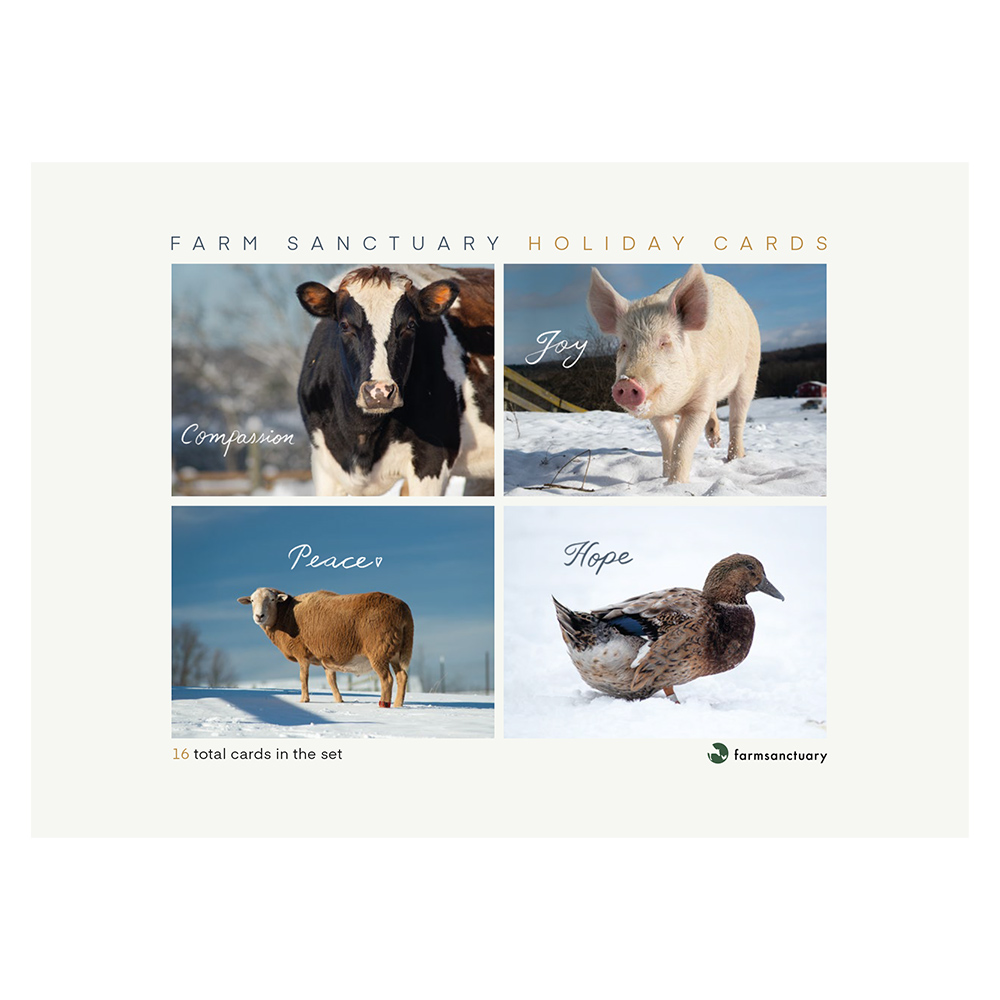 Farm Sanctuary 2020 Holiday Cards