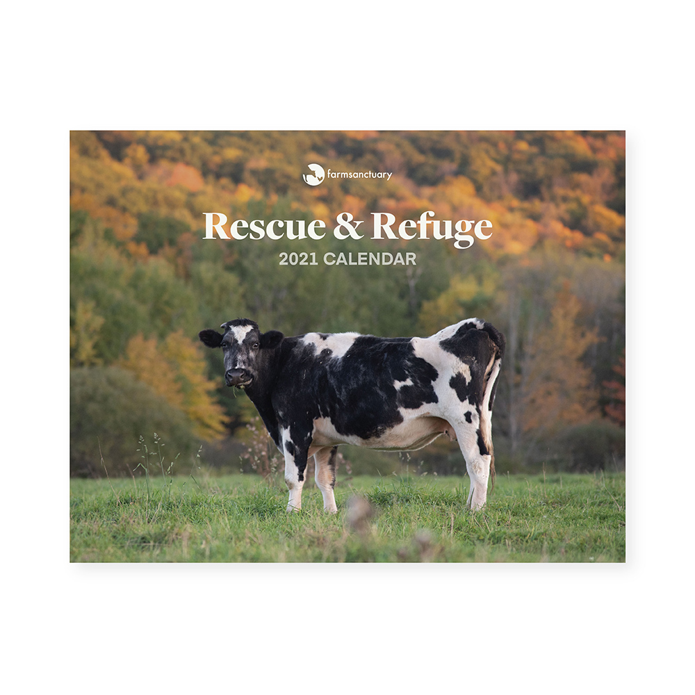 Farm Sanctuarys Rescue & Refuge 2021 Calendar