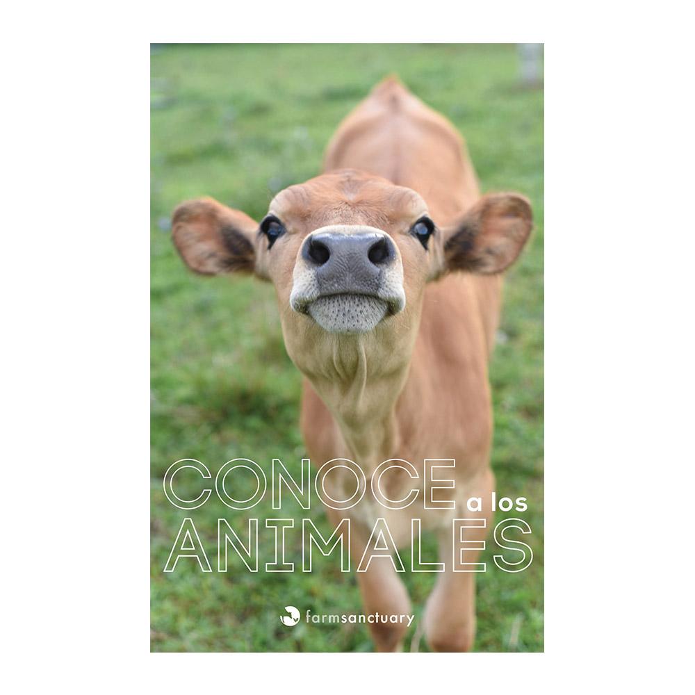 """La portada del folleto muestra un ternero con el título """"conoce a los animales"""