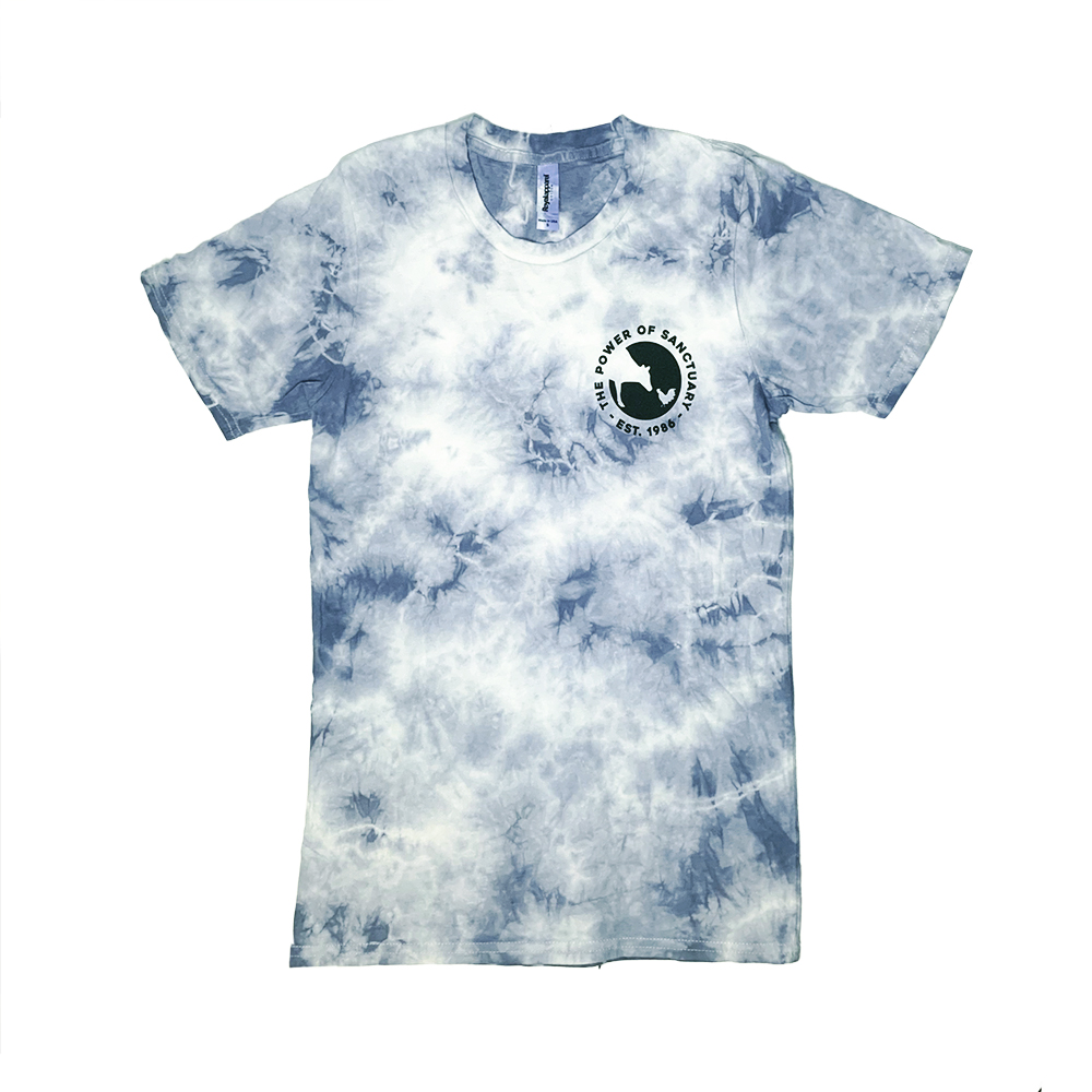 Grayish Blue tie-dye tee with a small FS logo on the left chest