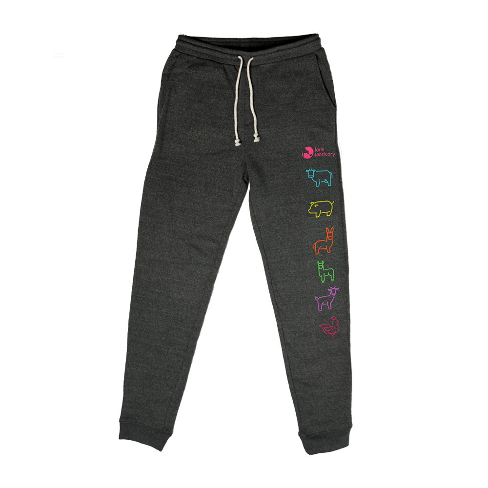 Dark gray sweatpants with colorful animal icons on the left leg