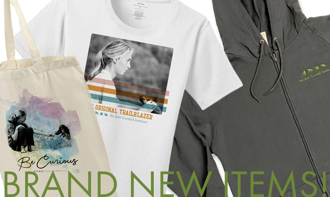 Shop our New Items!