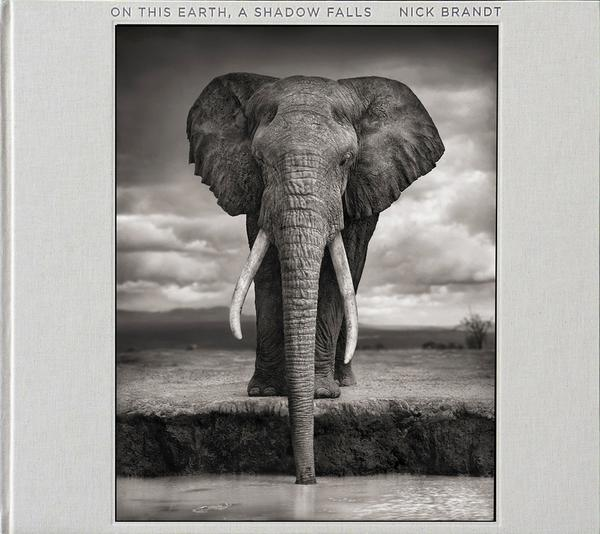 On This Earth, A Shadow Falls<br>*signed by Nick Brandt