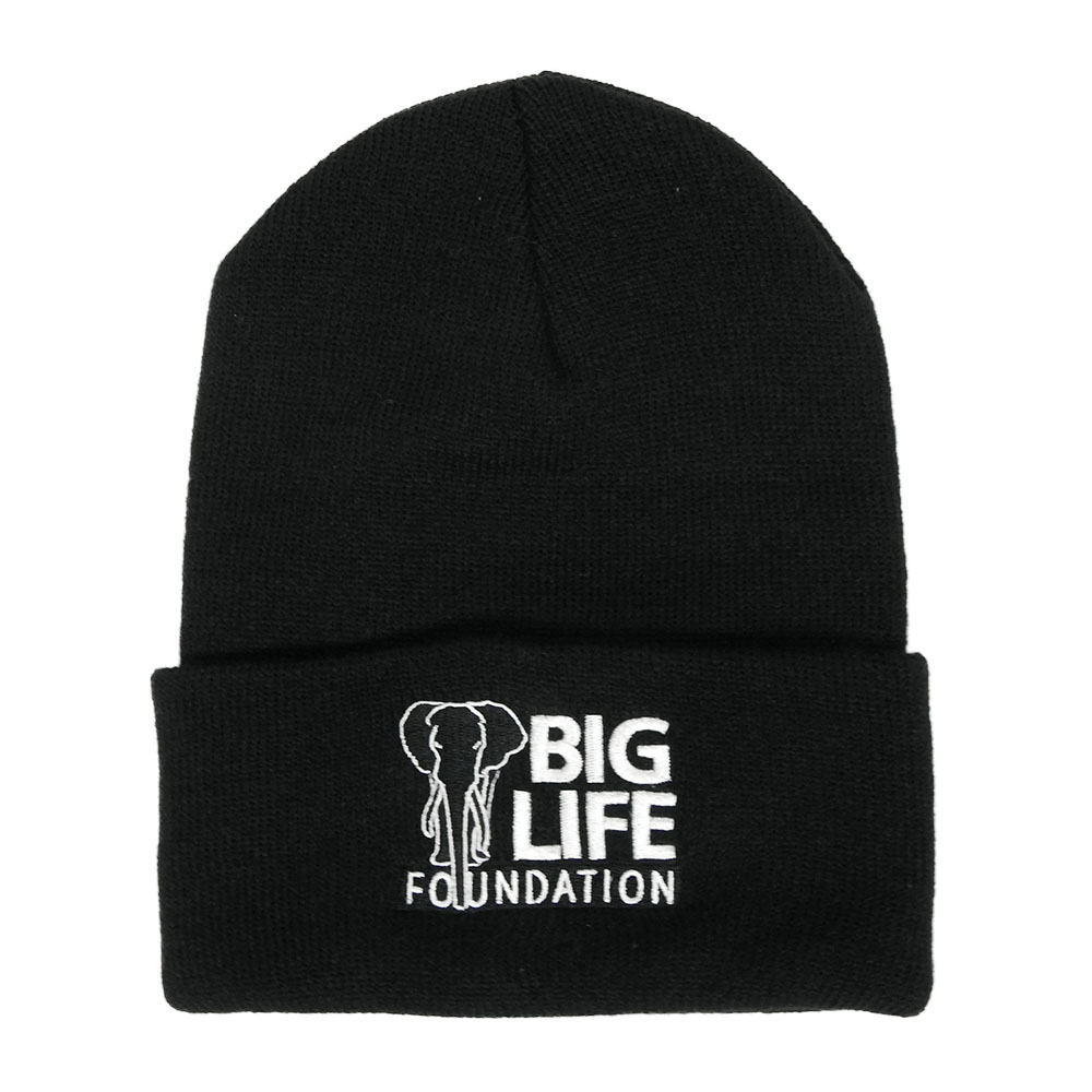 Big Life Knit Beanie