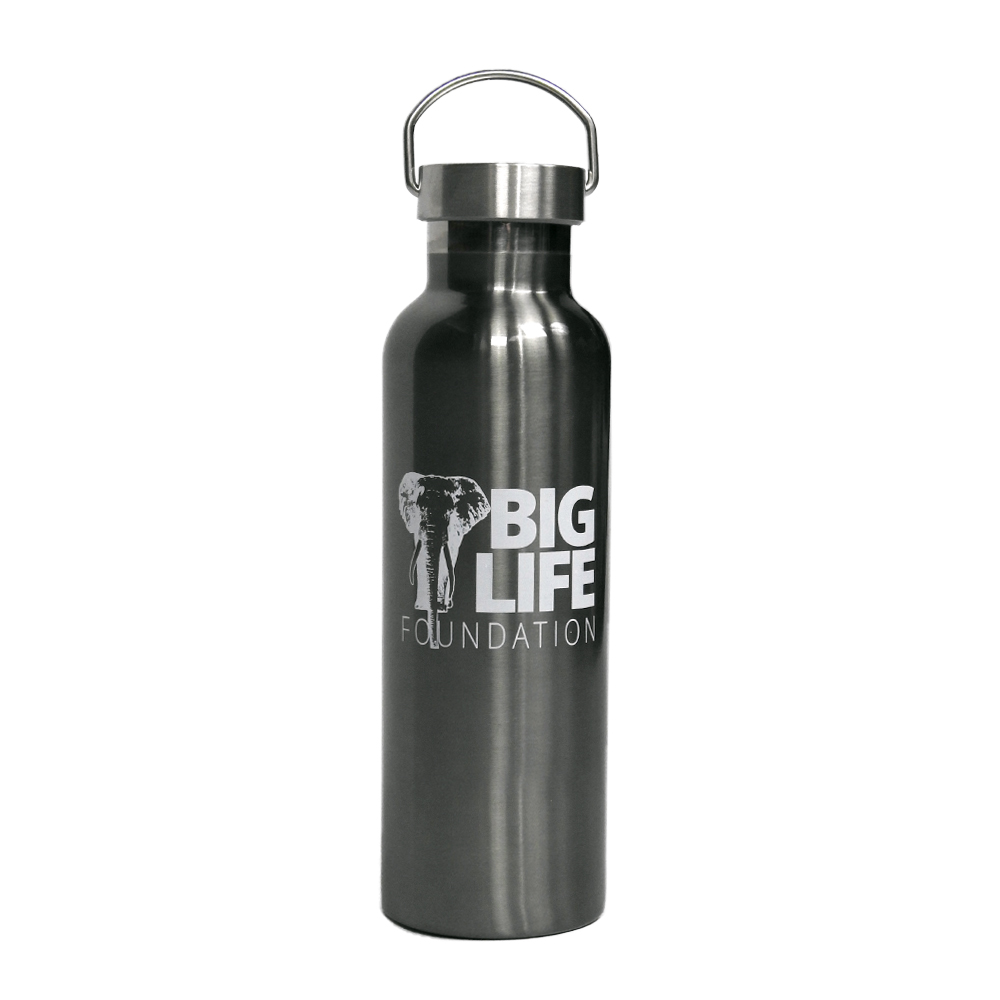 Big Life Insulated Stainless Steel Water Bottle - BL106