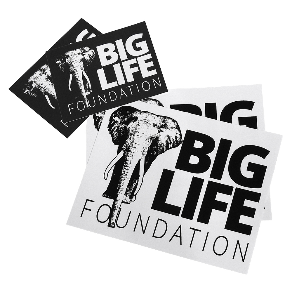 Big Life Stickers - Pack of 4