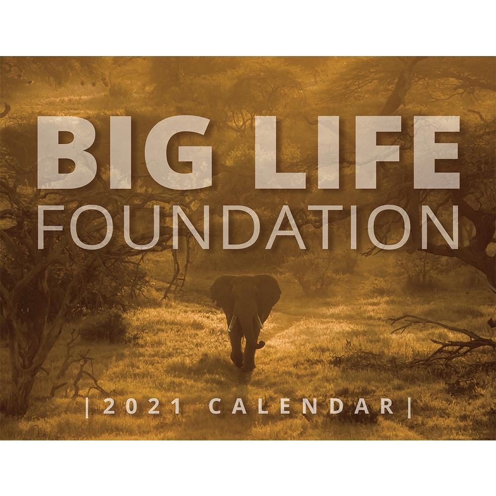 Big Life 2021 Calendar - BL120