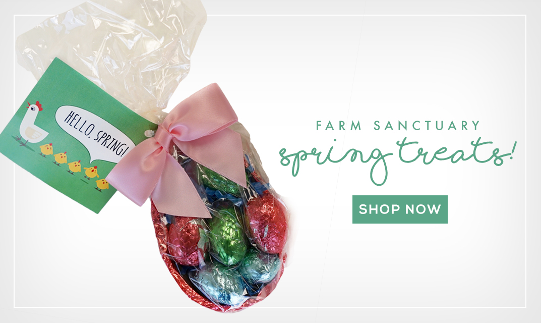 Try Farm Sanctuary's Vegan Chocolate Peanut Butter Eggs!