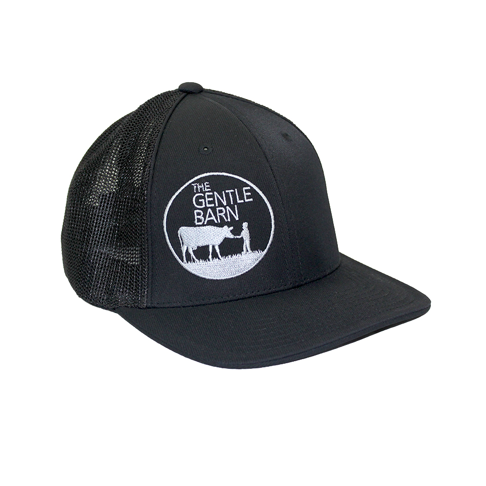 The Gentle Barn Pacific Mesh Adult Cap with a Grey Logo