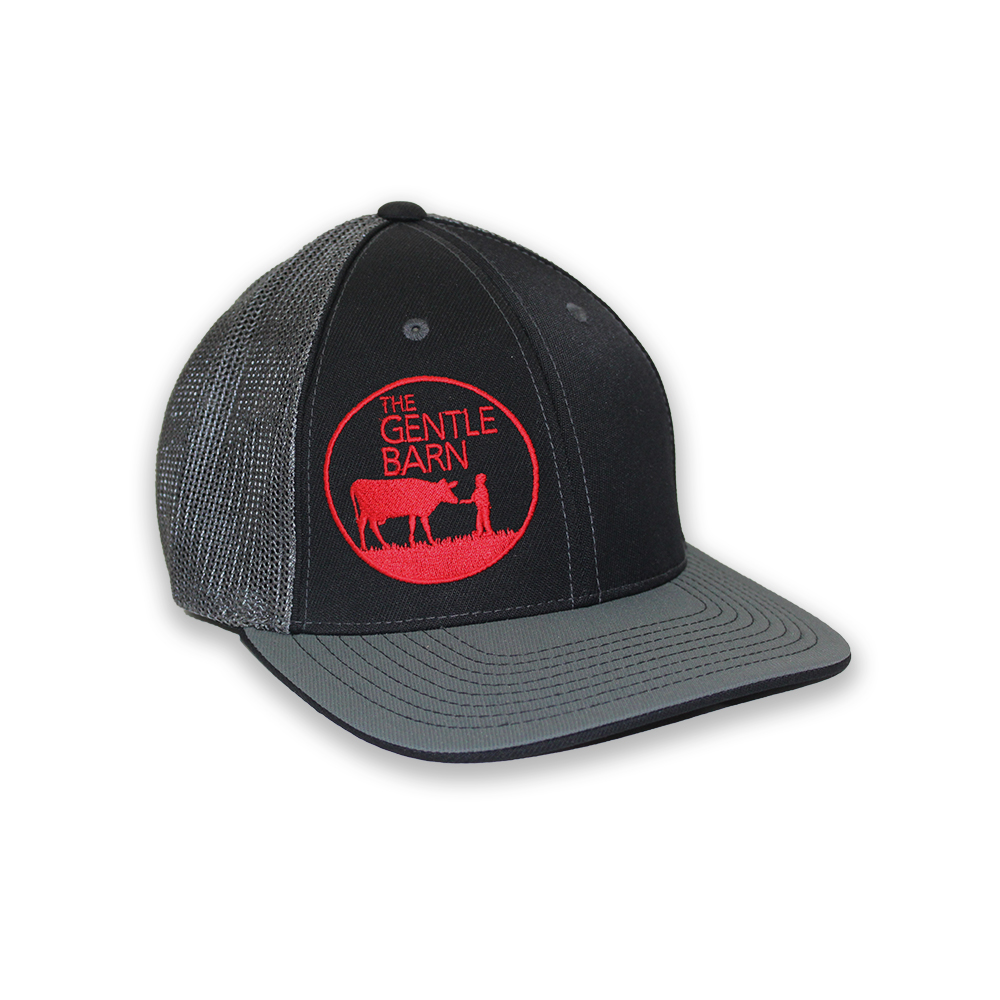 The Gentle Barn Pacific Mesh Adult Hat with Red Logo