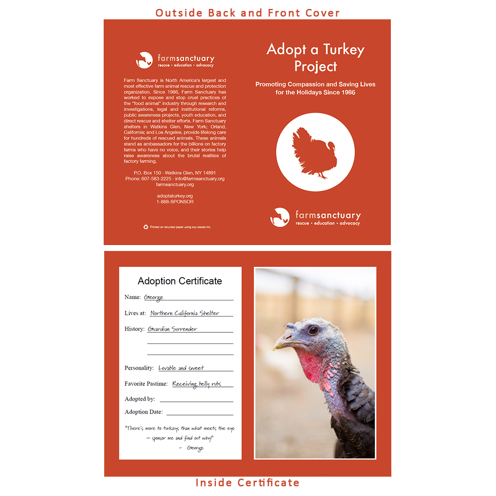 Adopt George the Turkey