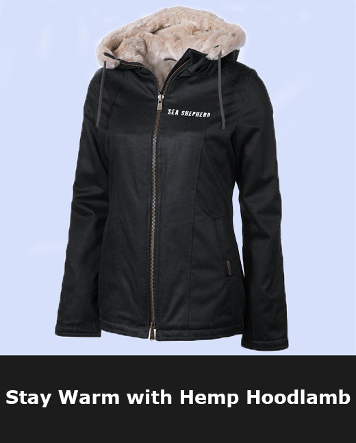 Shop Sea Shepherd Hemp Hoodlamb Items