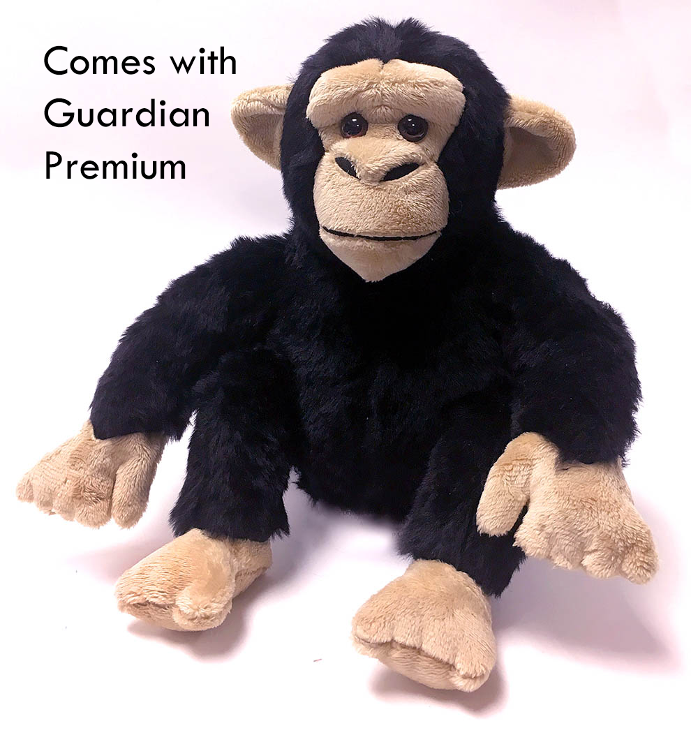 Become a Chimp Guardian for Wounda