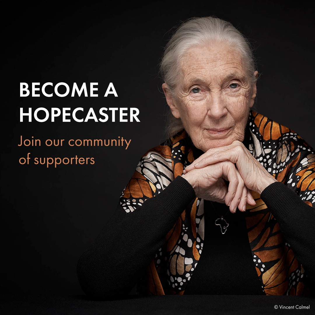 Become a Hopecaster
