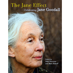 The Jane Effect