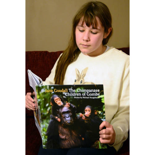 The Chimpanzee Children of Gombe - JGI119