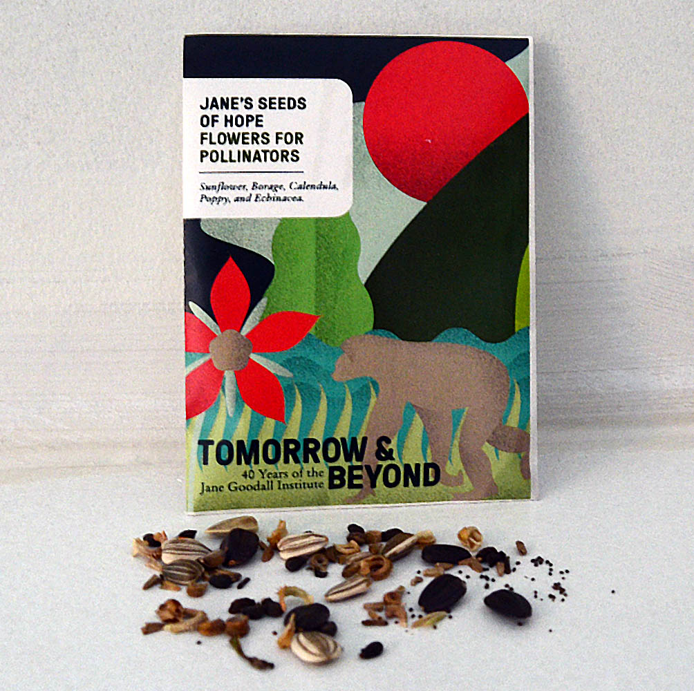 Pollinator Mix Seed Packet