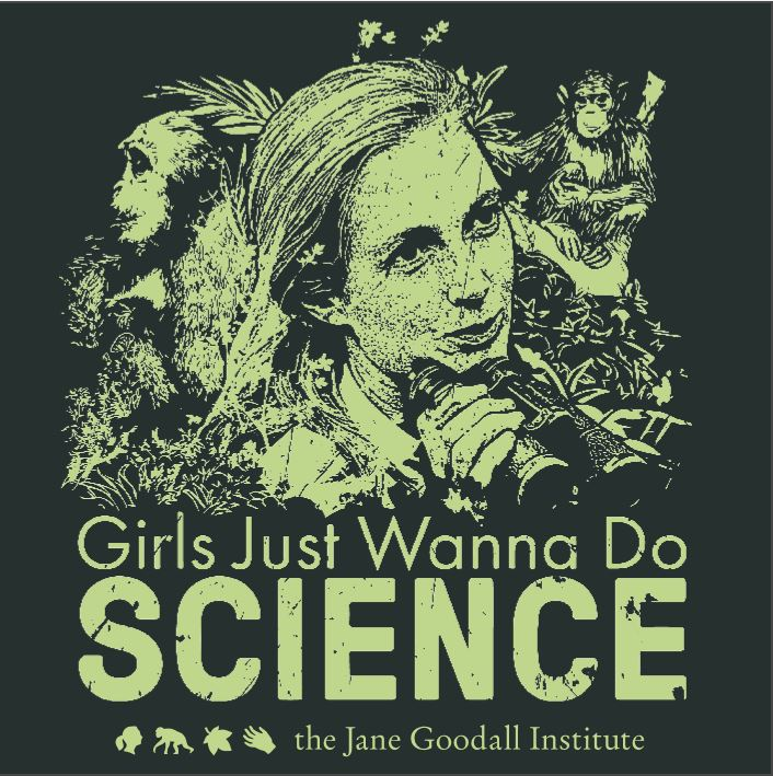 Girls Just Wanna Do Science Poster