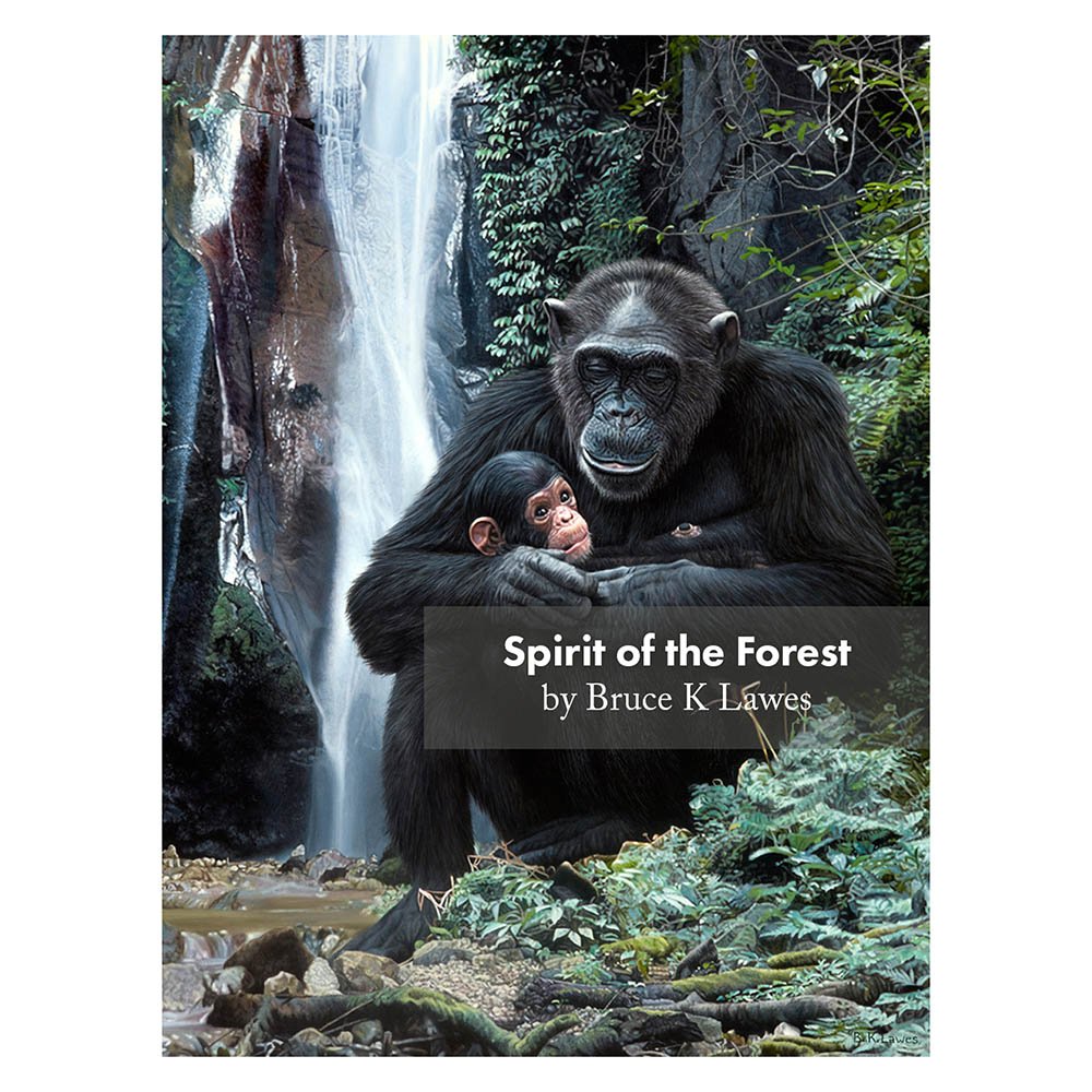 Spirit of the Forest Wrapped Canvas Print