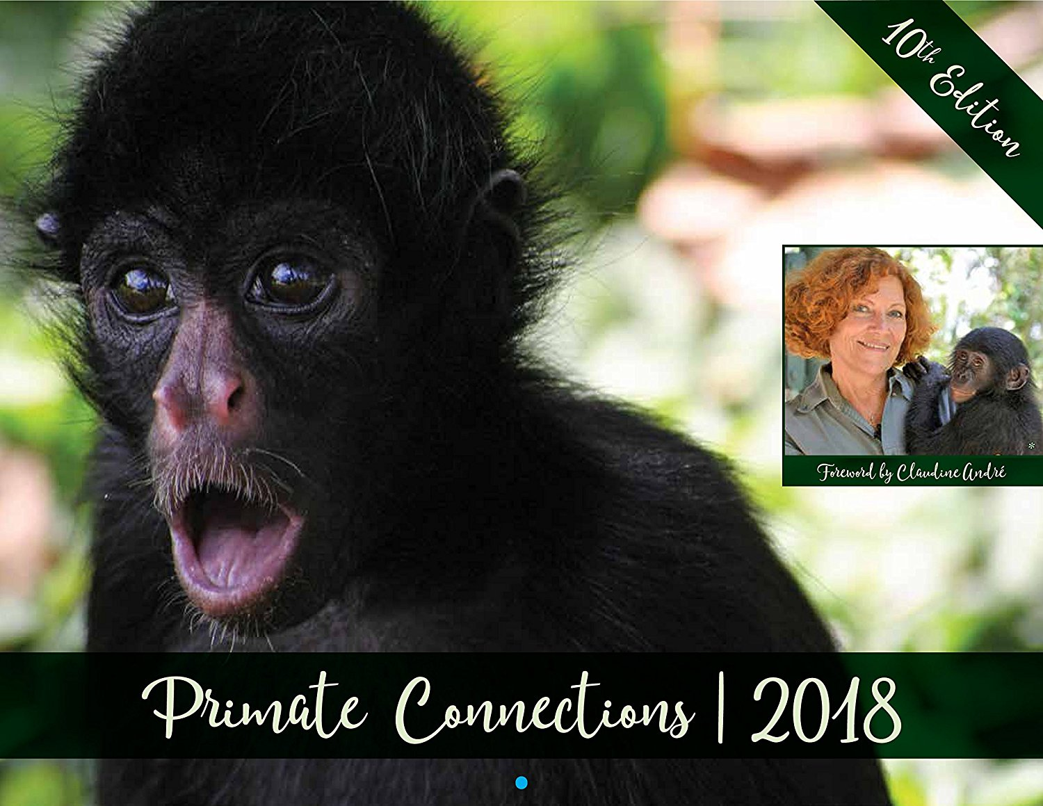 Primate Connections Calendar