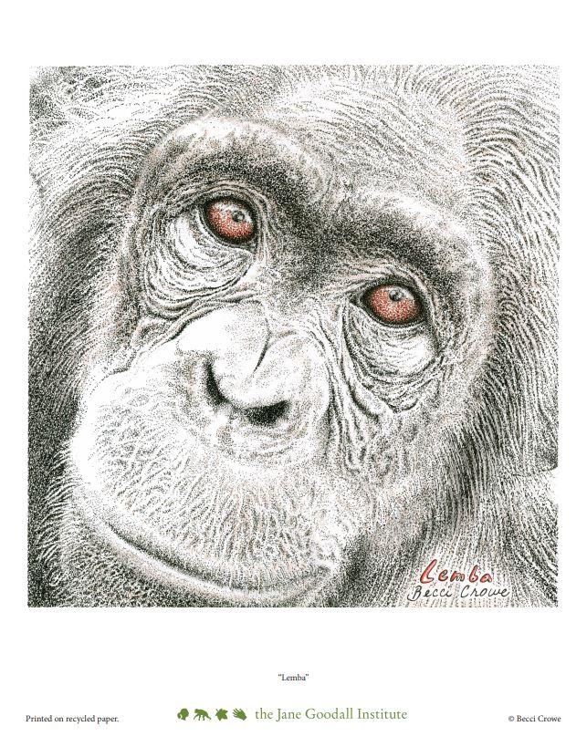 Lemba Art Print by Becci Crowe