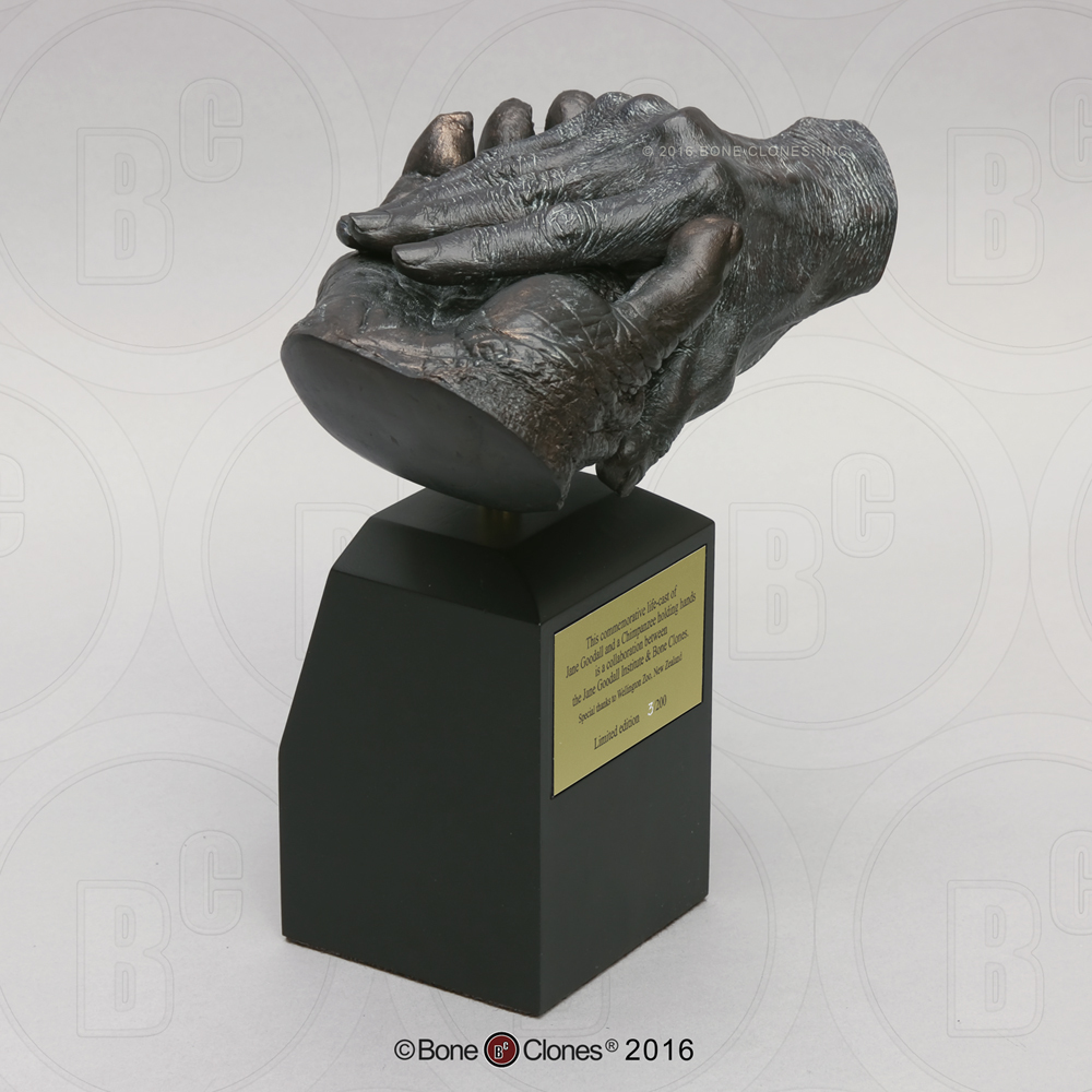 """Jane Goodall and Chimpanzee """"Hand-in-Hand"""" Life Cast on Base - Limited Edition - JGI212"""