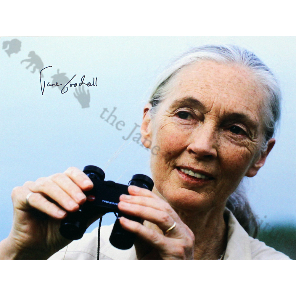 Autographed Photo of Jane Goodall (Holding Binoculars)