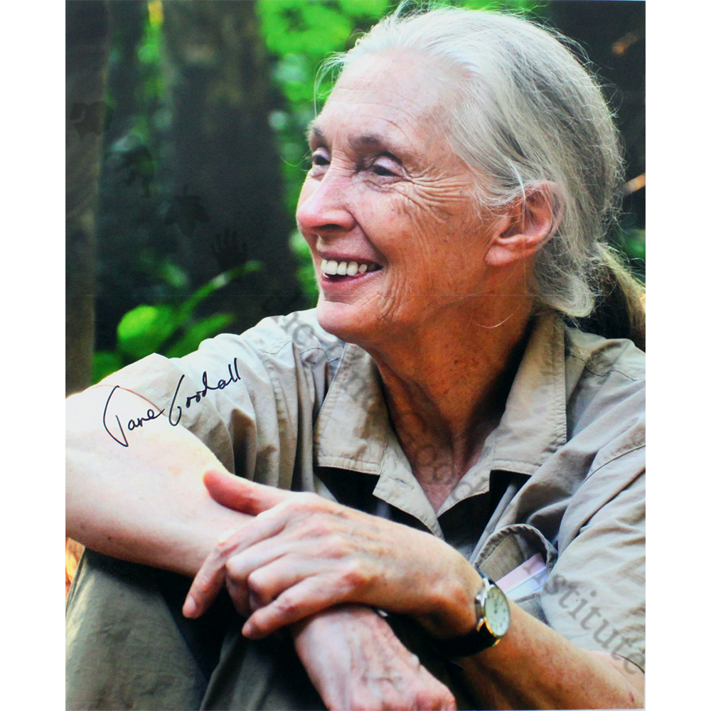 Autographed Photo of Jane Goodall (Hands Crossed)