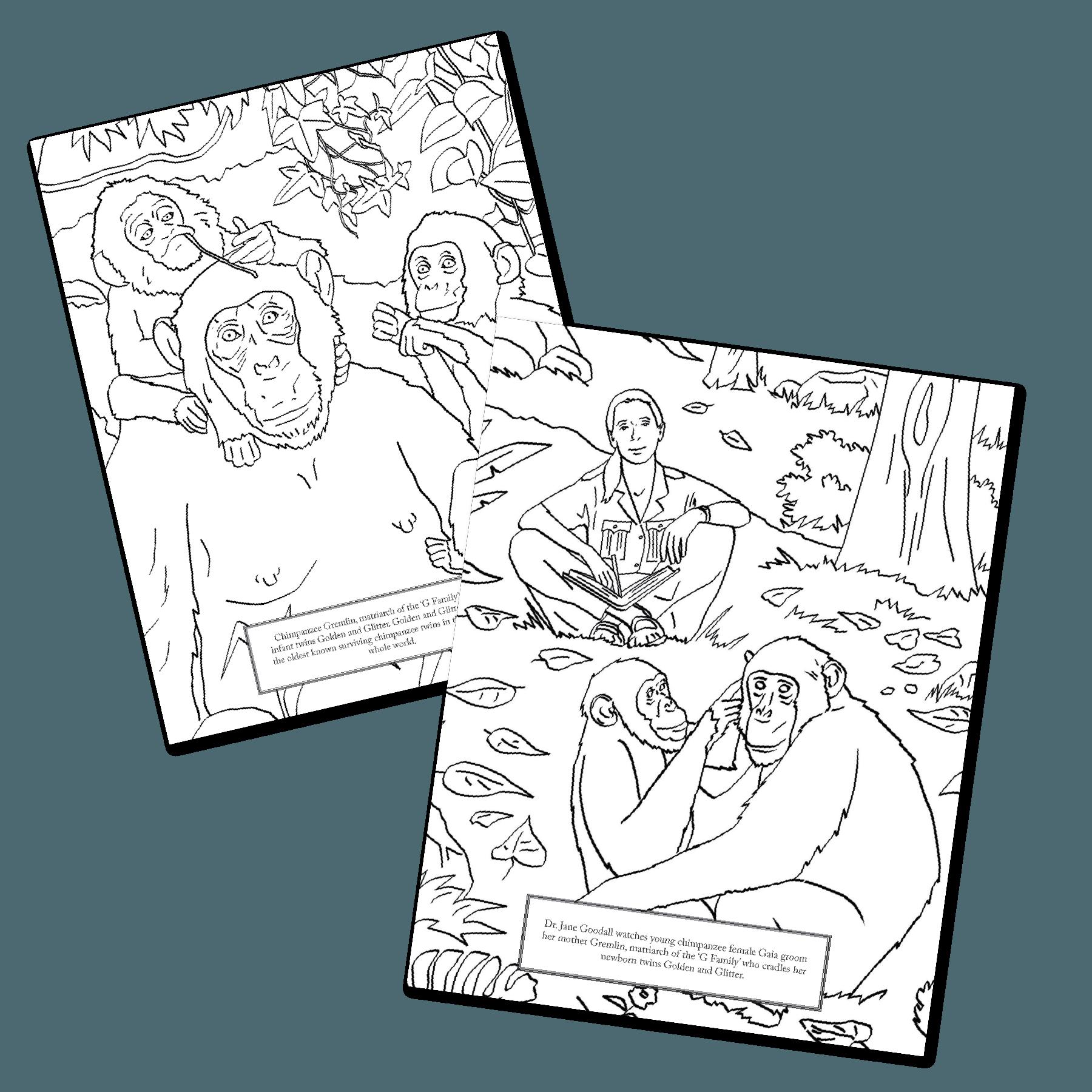 The Colors of Gombe Coloring Book - Digital Download - JGI262