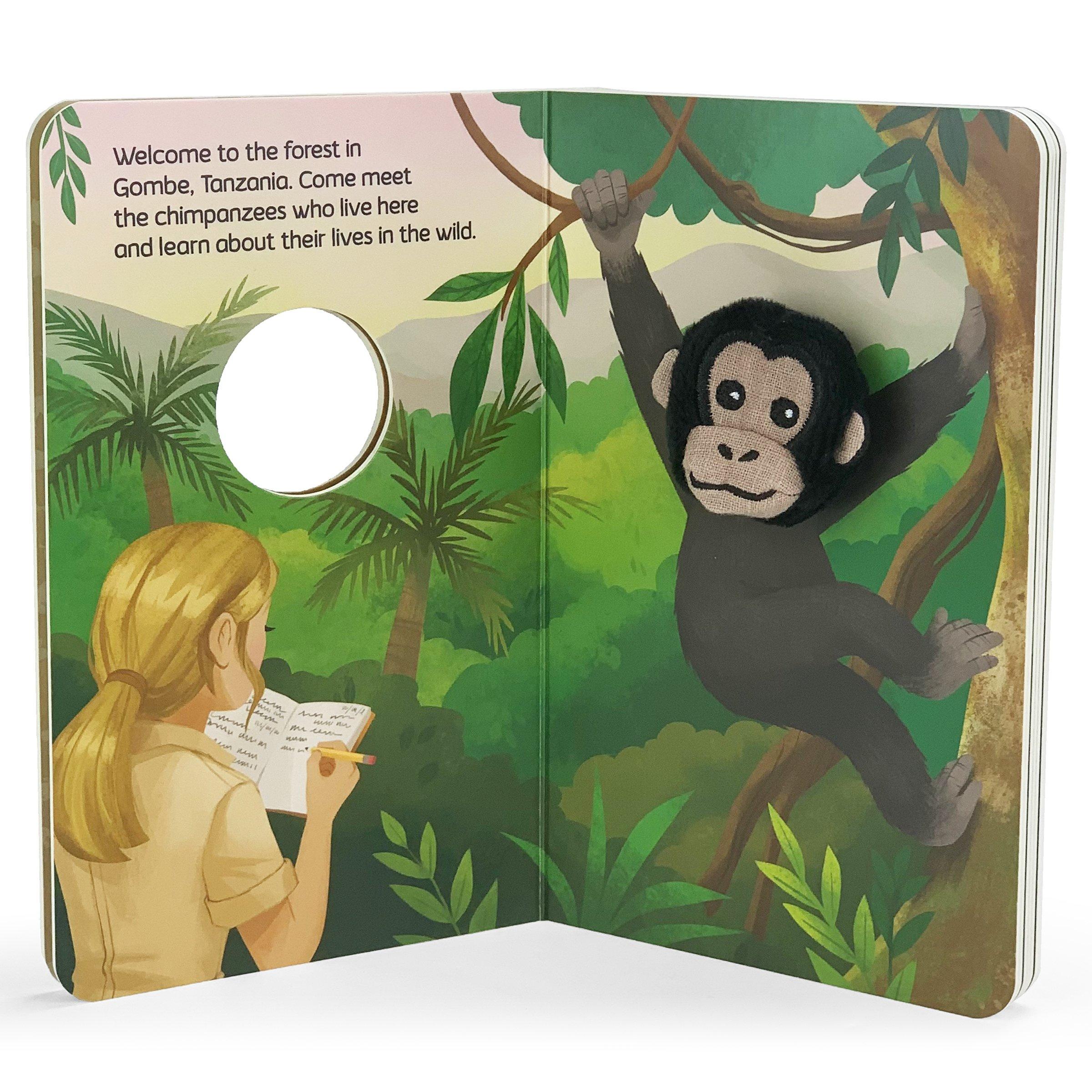 Jane & Me: Chimpanzee Family - JGI298