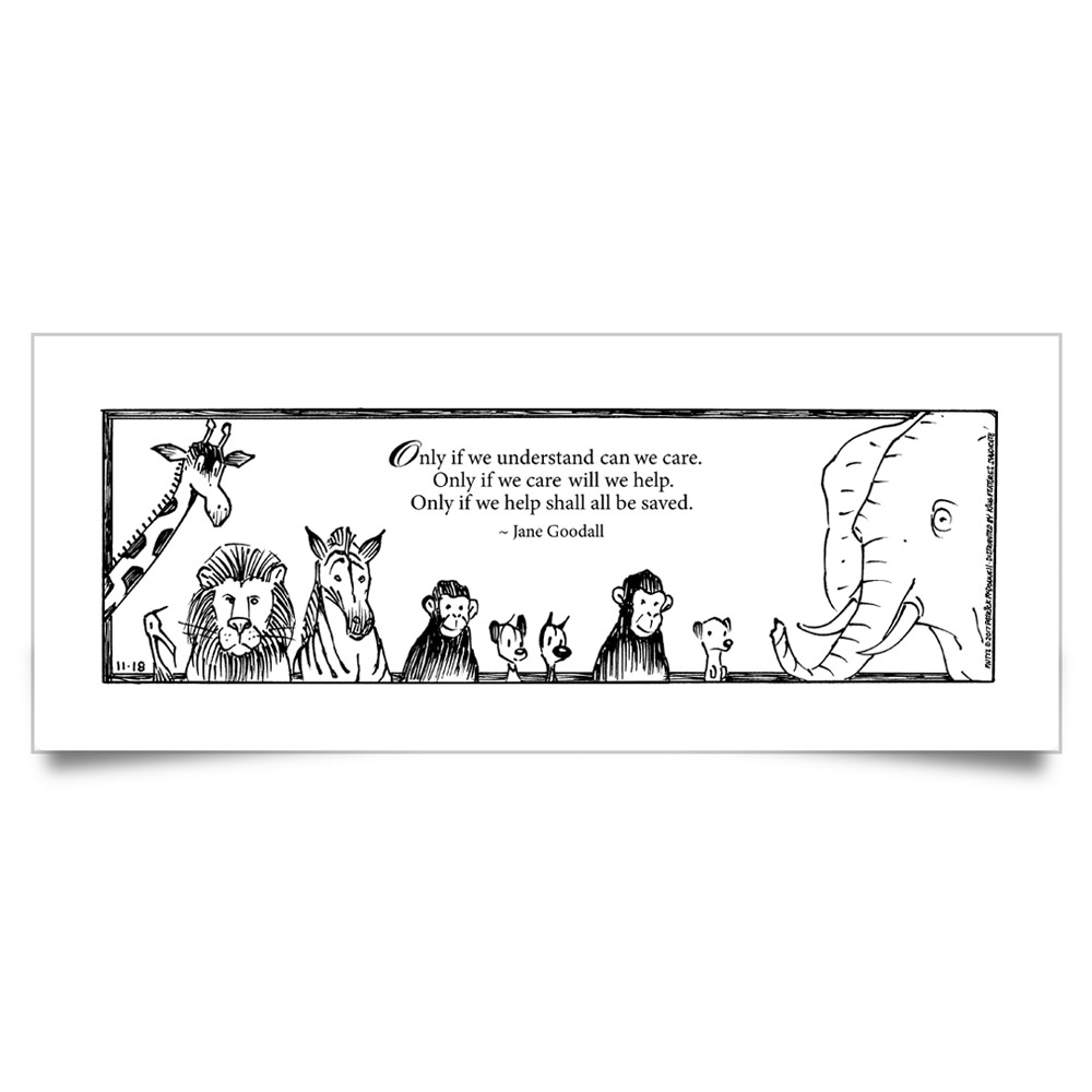 "MUTTS Print: ""Only If We Understand"" Quote"