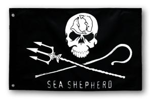 Jolly Roger Marine Flag – 1' x 1.5'