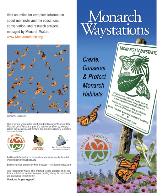 Monarch Watch Waystation Brochure (Pack of 100) - MW-WSBROCHURE-100