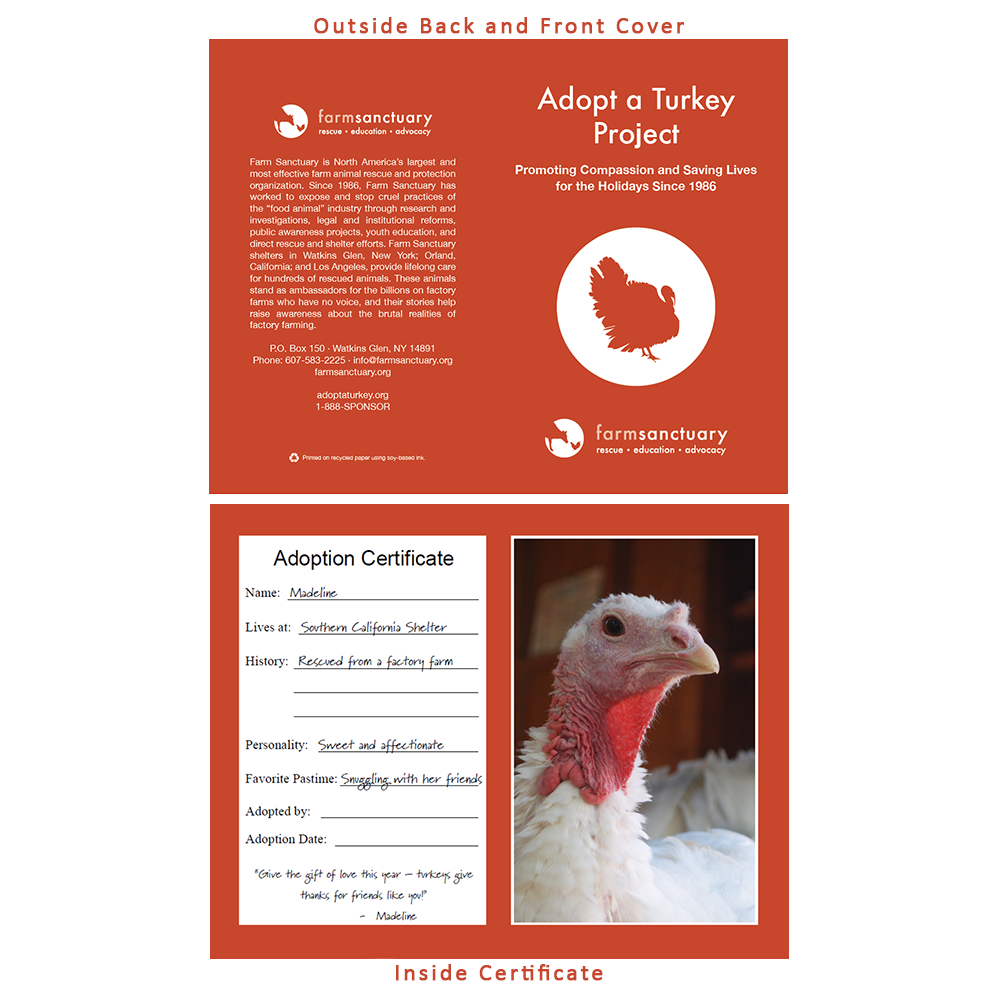 Adopt Madeline the Turkey