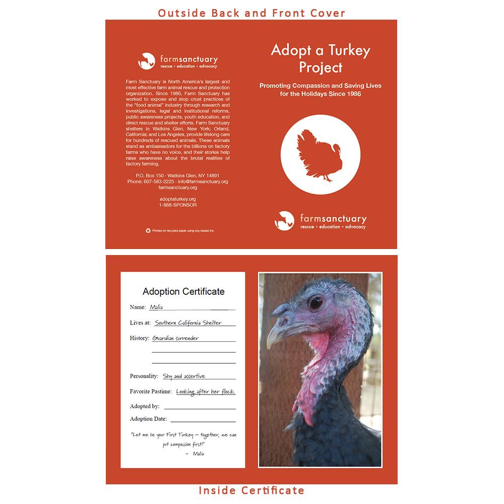 Adopt Malia the Turkey