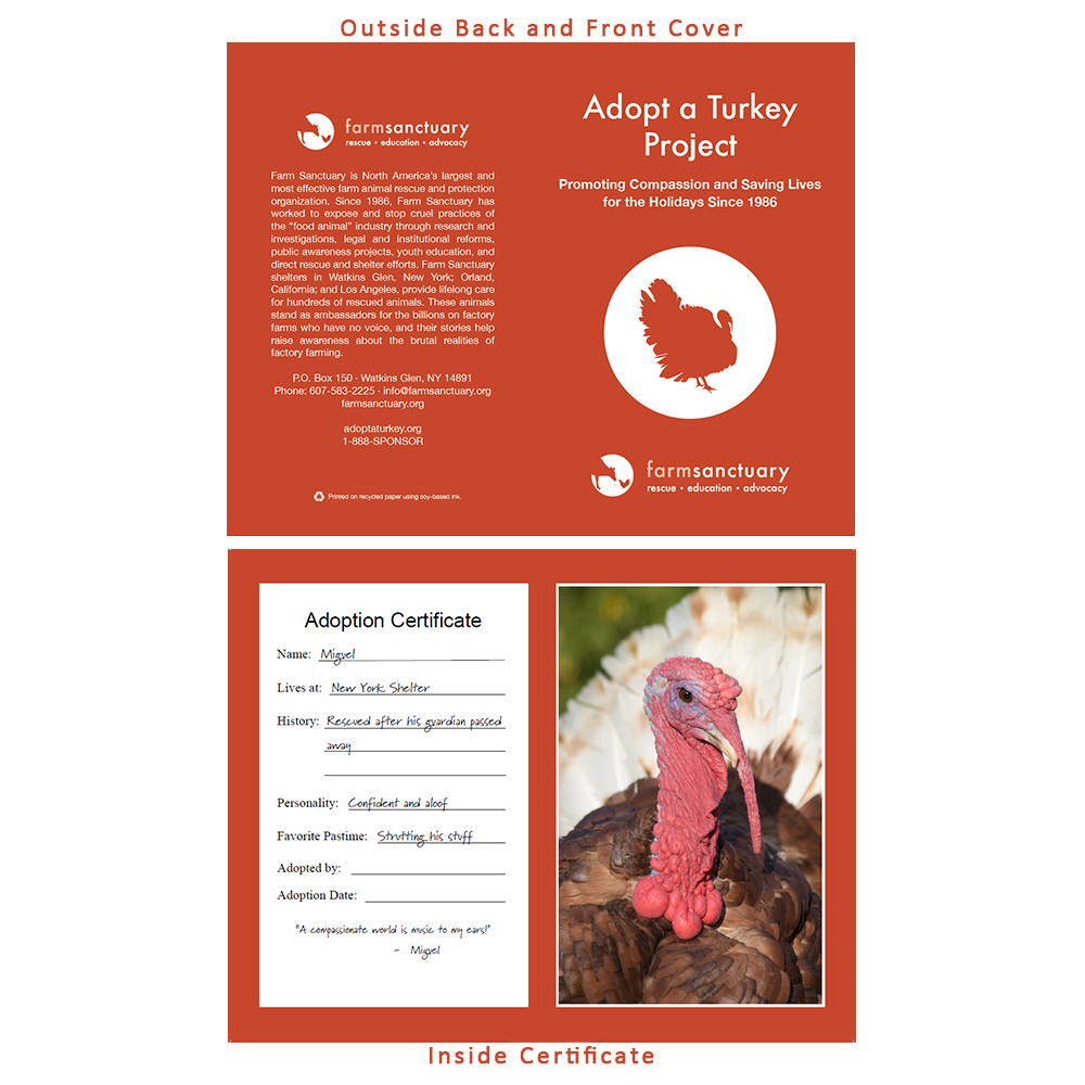 Adopt Miguel the Turkey