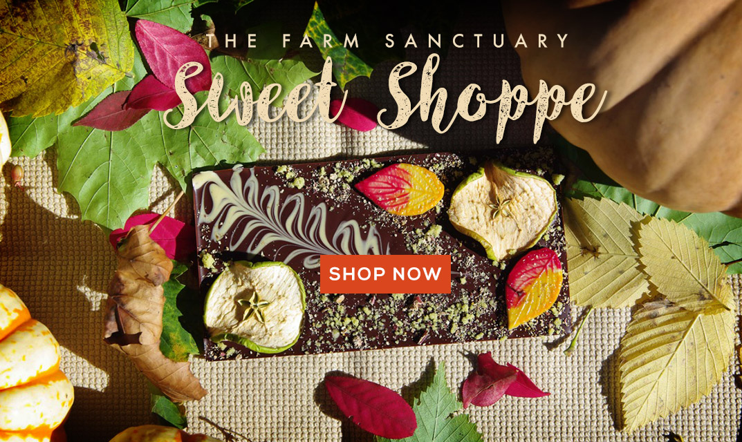 Shop Farm Sanctuary Sweet Shoppe